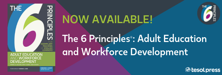 The 6 Principles- Adult Education and Workforce Development