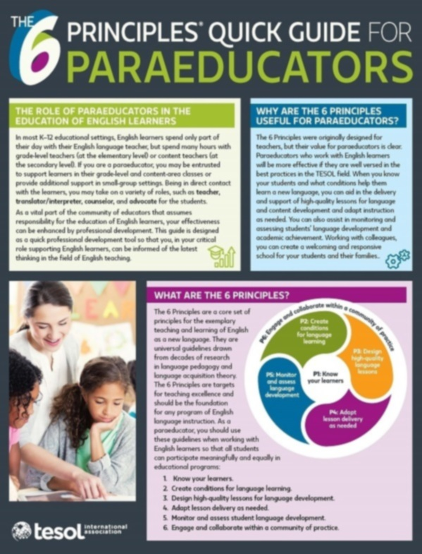 The 6 Principles® Quick Guide for Paraeducators (single) by Elizabeth Amaral